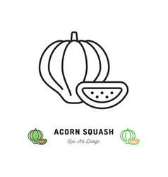 Acorn squash icon vegetables logo thin line art vector