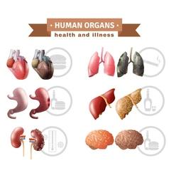 Human organs heath risks medical poster vector