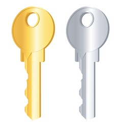 gold and silver keys vector image