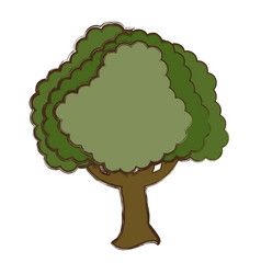 Beautiful tree isolated vector