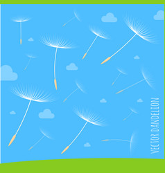 dandelion seeds blowing away on the wind vector image