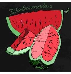 Watermelon 07 A vector image vector image