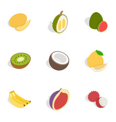 Tropical fruits icons isometric 3d style vector