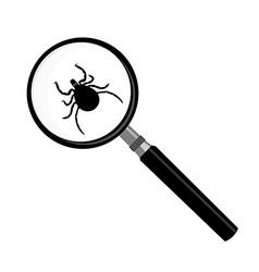 Antivirus scanning icon vector