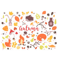 collection of colorful autumn leaves branches vector image