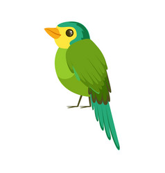 Small bird in blue and green colors colorful vector