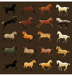 Horse coat colors vector
