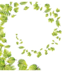 Green leaves frame isolated on white eps 10 vector