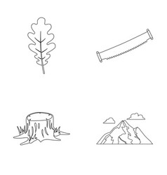 Oak leaf saw stump mountainforest set vector