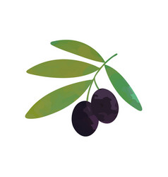 Cartoon of branch with black ripe vector