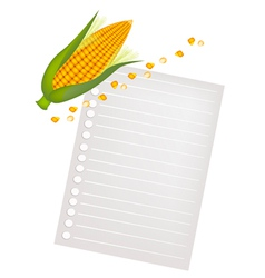 Ears of Yellow Corns with A Blank Paper vector image