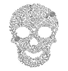 Floral skull on white background vector