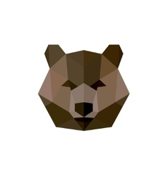 Grizzly Bear in polygon design style with flat vector image vector image