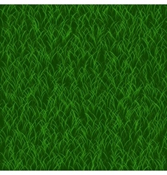 Perfect lawn background green grass beautiful vector