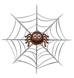 spider on spider web vector image vector image