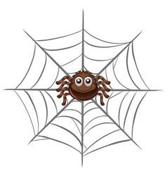 Spider on spider web vector
