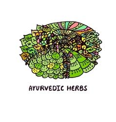 Zentangle element Ayurvedic herbs vector image