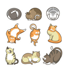 Cartoon cats in various positions set on white vector