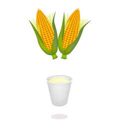 A cup of corn juice and fresh sweet corns vector