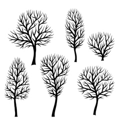 Collection of abstract stylized black trees vector image