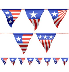 patriotic flags vector image
