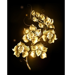 Shining Golden Orchid vector image