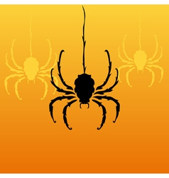 decorative spiders vector image