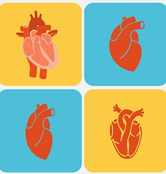 Heart Diagram Icon Set vector image vector image