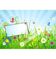 summer meadow beautiful vector image