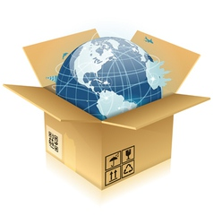 Cardboard Box with Earth vector image