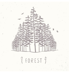 Forest of tall trees vector