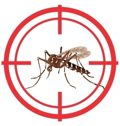 Nature Aedes Aegypti mosquitoes with stilt target vector image