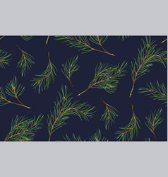 Seamless pattern of pine christmas spruce new vector