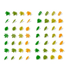 Icons yellow leaves vector image
