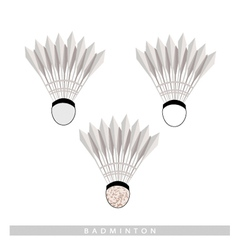 Set of shuttlecock on a white background vector