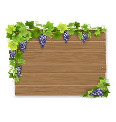 Branch of grapes on wooden sign vector