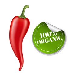 Chilli pepper with label vector