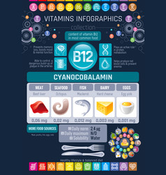 Cyanocobalamin vitamin b12 rich food icons vector