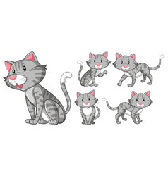 Different actions of gray cat vector