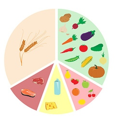 Healthy eating chart vector image vector image
