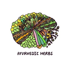 Zentangle element ayurvedic herbs vector