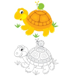Tortoise and snail vector