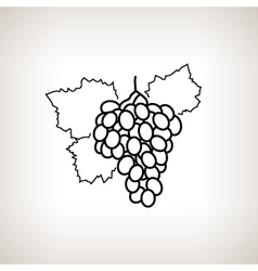 Grapes in the contours vector