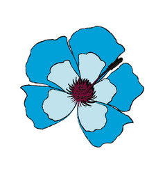 Blue flower decoration floral ornament vector