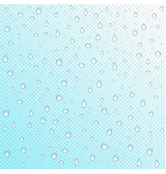 Waterdrops on transparent background vector