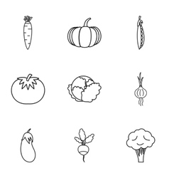 Fresh vegetables icons set outline style vector