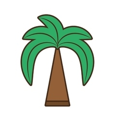 Green palm beach tree vector