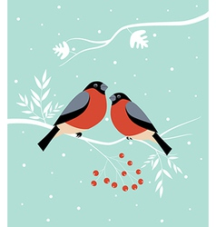 Two birds in winter vector image