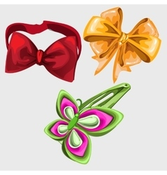 Accessories in shape of butterfly tie and hairpin vector image