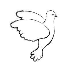 pigeon peace flying in side view on blurred vector image vector image